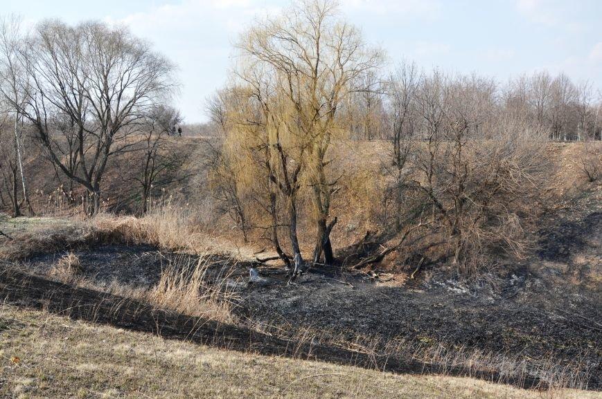 Пожарные в Юбилейном: обширное возгорание сухой травы и листьев (ФОТО и ВИДЕО), фото-10