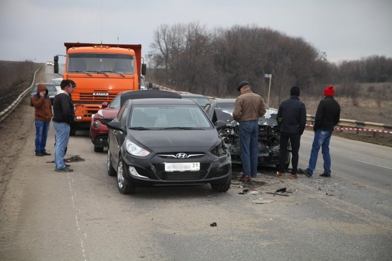 В Корочанском районе произошла авария с участием 11 автомобилей, в ДТП никто не пострадал, фото-1