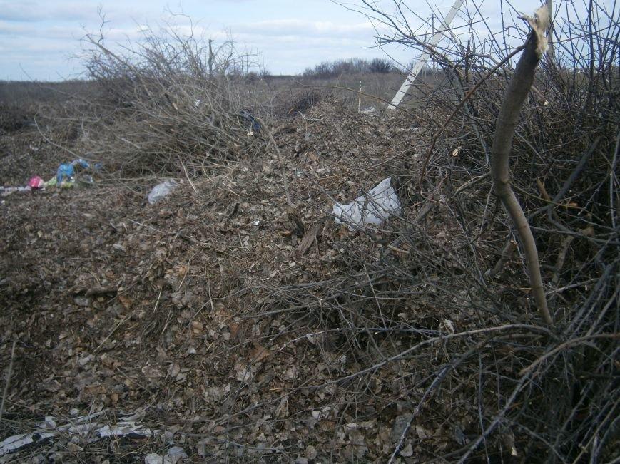 Спиленные ветви деревьев с центра Красноармейска «перекочевали» на окраину (ФОТОРЕПОРТАЖ) (фото) - фото 14
