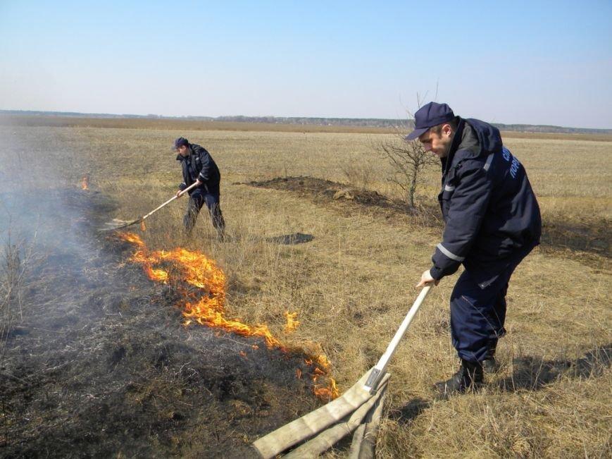 Черниговцы продолжают жечь несмотря ни на что (фото) - фото 1