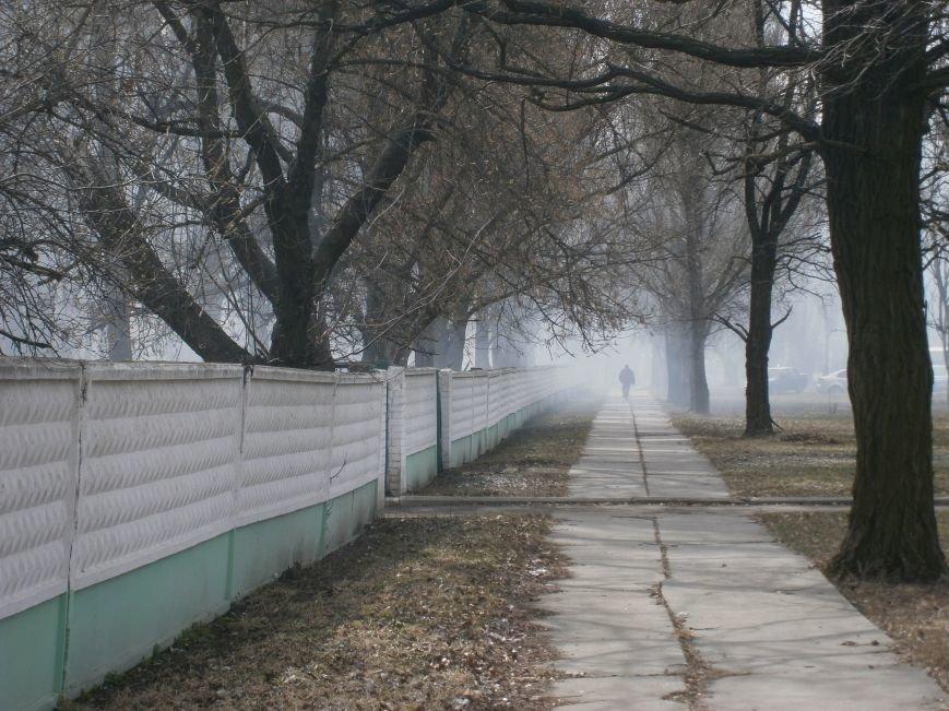 В Красноармейске сжигают листья, несмотря на запреты (фото) - фото 7
