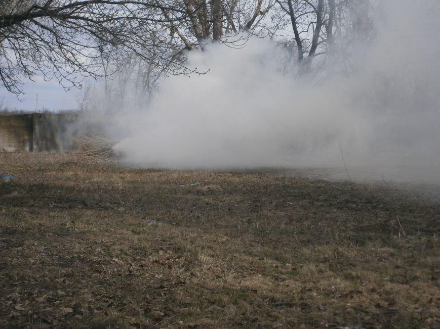 В Красноармейске сжигают листья, несмотря на запреты (фото) - фото 3