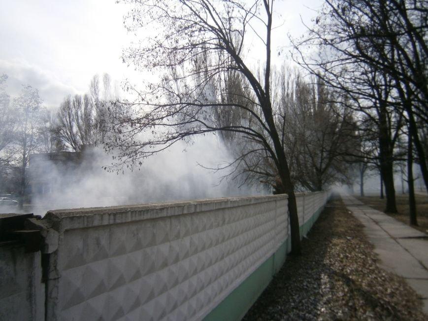 В Красноармейске сжигают листья, несмотря на запреты (фото) - фото 6