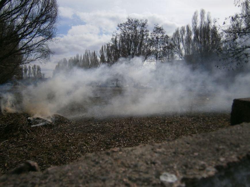 В Красноармейске сжигают листья, несмотря на запреты (фото) - фото 1