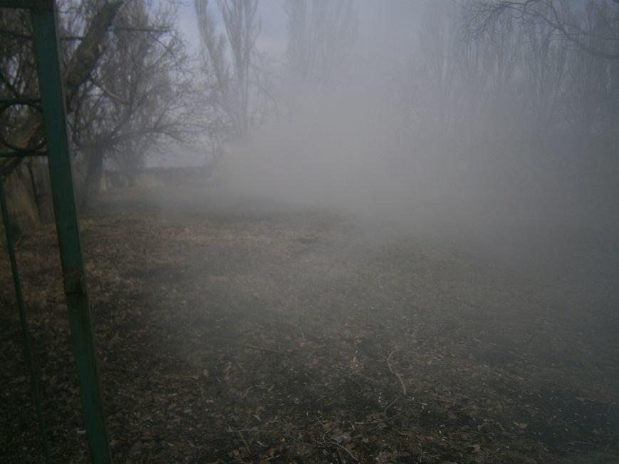 В Красноармейске сжигают листья, несмотря на запреты (фото) - фото 4
