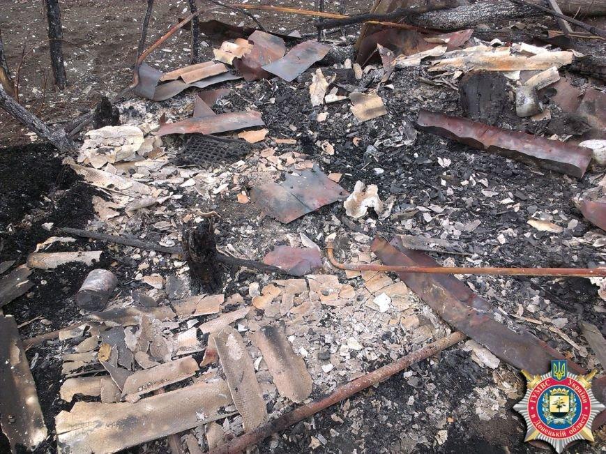 Красноармейские правоохранители задержали подозреваемого в убийстве и поджоге (ФОТО), фото-1