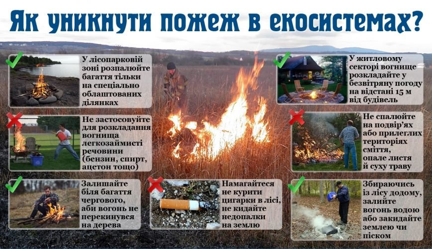 В марте из-за пожаров на открытой местности в Полтавской области погибло 4 человека (фото) - фото 1