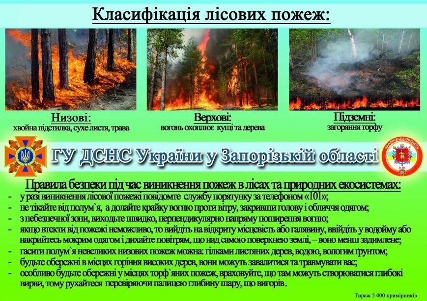 За последние две недели в Украине из-за пожаров в экосистемах погибло 4 человека (фото) - фото 1