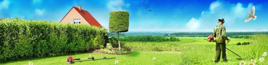 Пора готовиться к сезону: как привести в порядок газоны и лужайки, и сэкономить время для отдыха на природе (фото) - фото 2