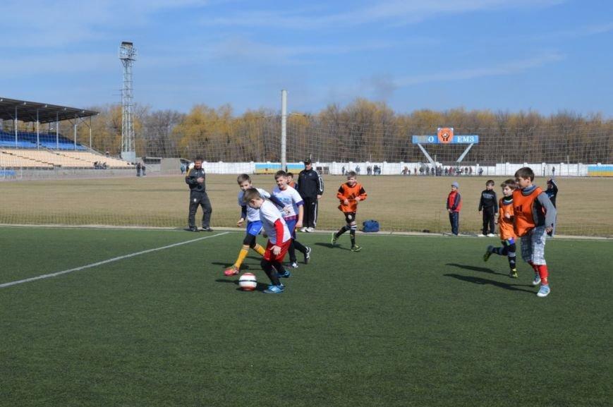 При поддержке металлургов в Енакиево состоялся турнир юных футболистов, фото-2