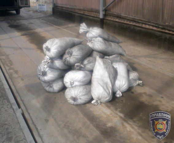 В Доброполье задержана группа расхитителей угля из грузового вагона (фото) - фото 1