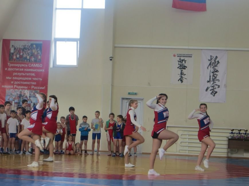 ФОК «Фокус» Домодедово впервые принял соревнования по вольной борьбе (фото) - фото 2