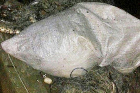 Працівники міліції затримали жителя одного із сіл Черкащини, який займався виловом риби забороненими знаряддями лову (фото) - фото 1