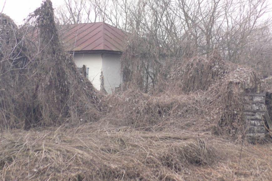 На Черниговщине чуть не сгорело целое село (фото) - фото 1