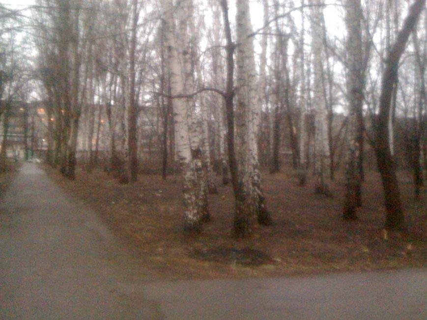 Генеральная уборка в Красноармейске: от парка «Юбилейный» до Динаса, фото-24