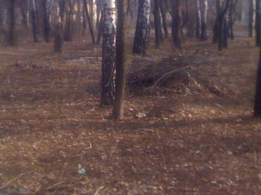 Генеральная уборка в Красноармейске: от парка «Юбилейный» до Динаса, фото-22