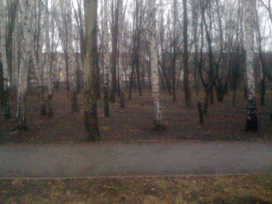 Генеральная уборка в Красноармейске: от парка «Юбилейный» до Динаса, фото-26