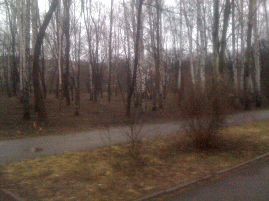 Генеральная уборка в Красноармейске: от парка «Юбилейный» до Динаса, фото-25