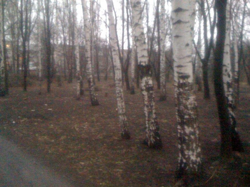 Генеральная уборка в Красноармейске: от парка «Юбилейный» до Динаса, фото-23