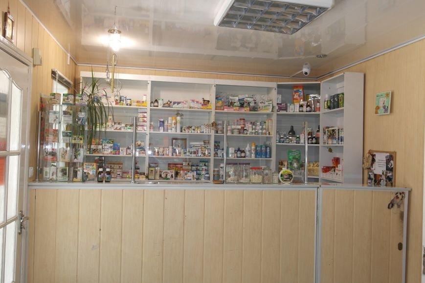 В клинике «Айболит» и магазине зоотоваров «ПЕСиК©» в городе Красноармейске есть все для здоровья ваших питомцев!, фото-1