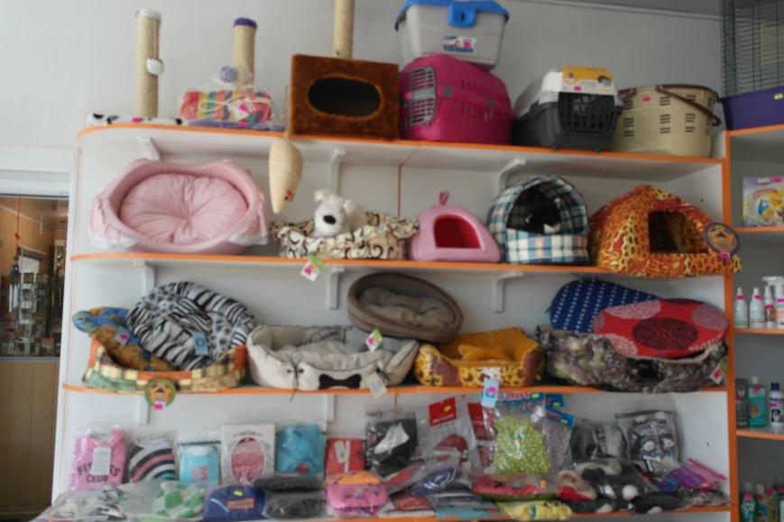 В клинике «Айболит» и магазине зоотоваров «ПЕСиК©» в городе Красноармейске есть все для здоровья ваших питомцев!, фото-10