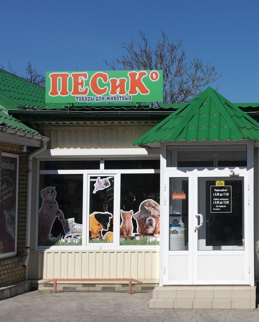 В клинике «Айболит» и магазине зоотоваров «ПЕСиК©» в городе Красноармейске есть все для здоровья ваших питомцев!, фото-6