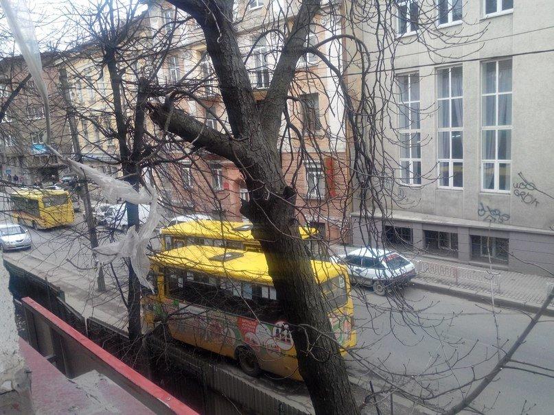 Маршрутка стала причиною затору на вулиці Січових Стрільців (ФОТО, ВІДЕО) (фото) - фото 2