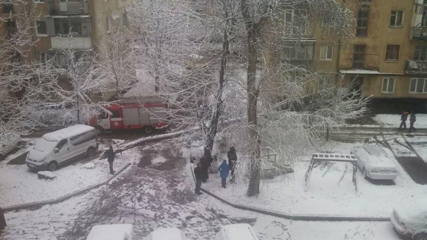 Через сильний снігопад посеред весни, у Львові на припарковану іномарку впало величезне дерево (ФОТО), фото-1