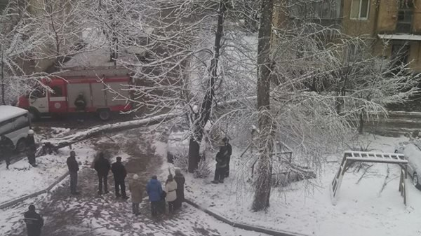Через сильний снігопад посеред весни, у Львові на припарковану іномарку впало величезне дерево (ФОТО), фото-2