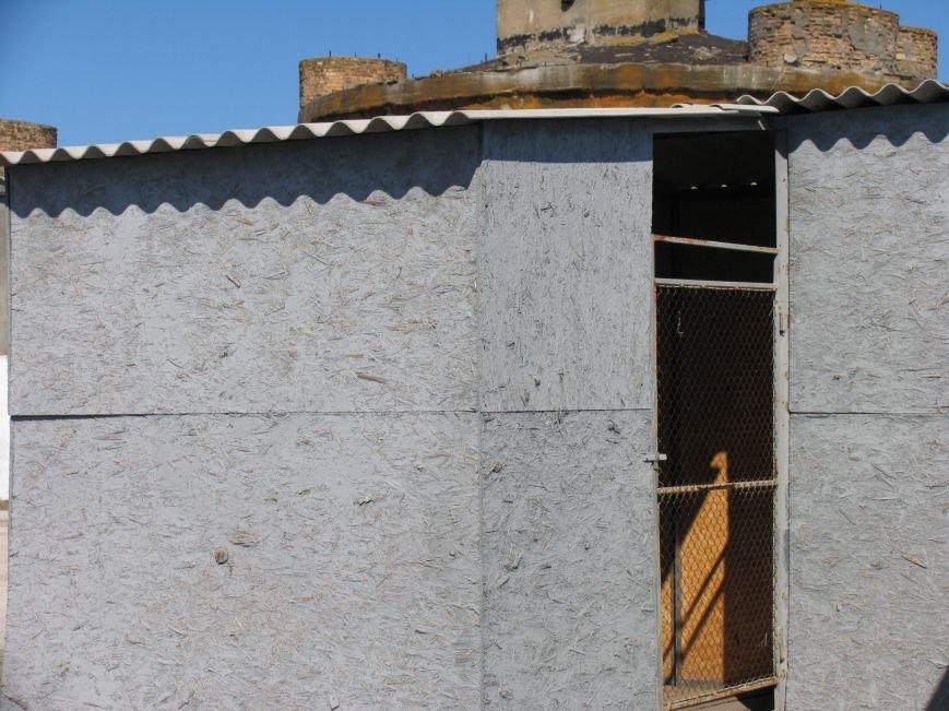 Приют для бездомных животных в Никополе построен  с многочисленными нарушениями, фото-3