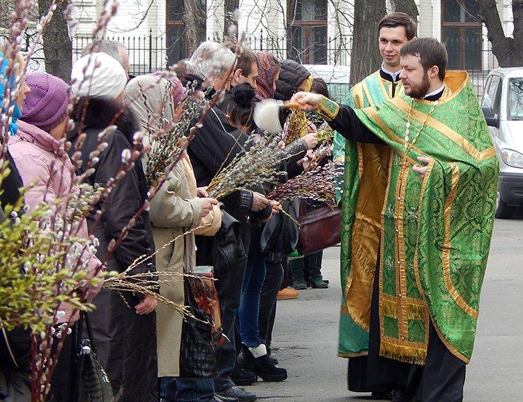В киевских храмах освятили вербу (ФОТО) (фото) - фото 1