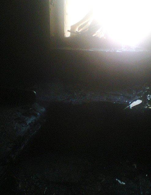 Николаевские спасатели вытащили из пылающей квартиры мать с двумя малышами (ФОТО) (фото) - фото 1