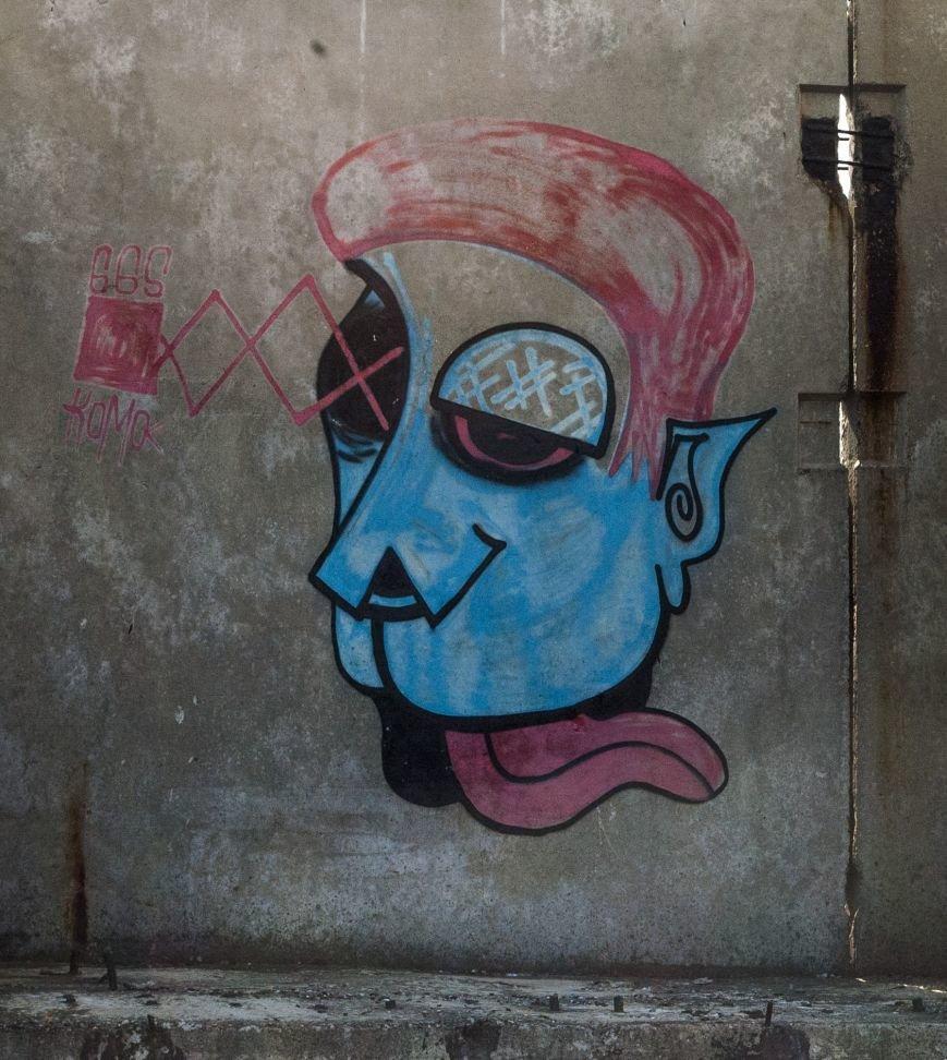На окраине Запорожья найдена тренировочная база граффити (ФОТОРЕПОРТАЖ), фото-18