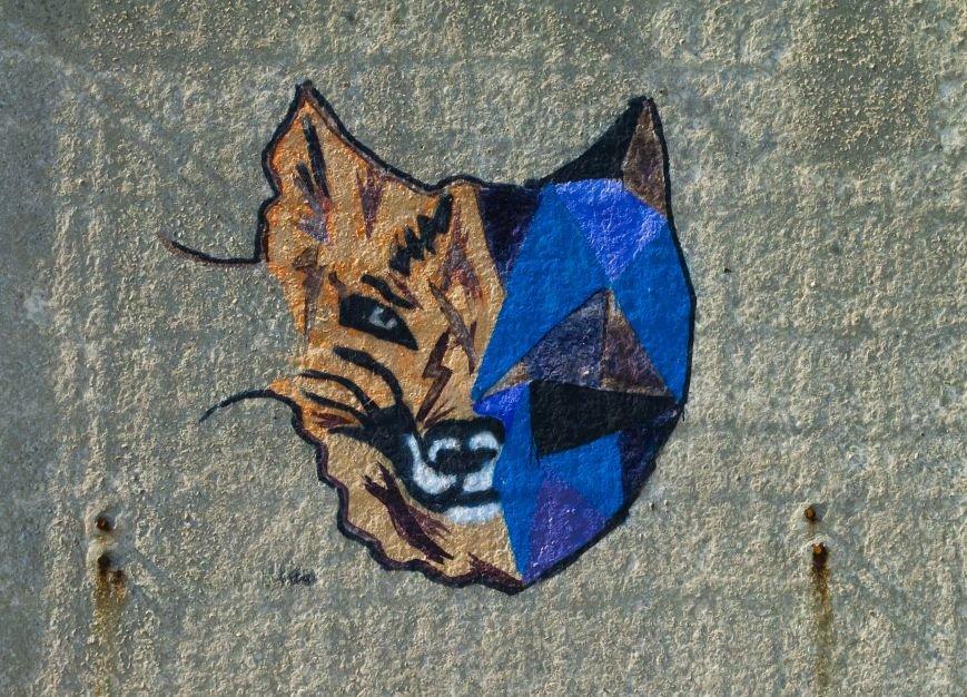 На окраине Запорожья найдена тренировочная база граффити (ФОТОРЕПОРТАЖ), фото-23