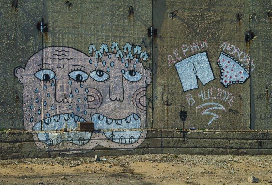 На окраине Запорожья найдена тренировочная база граффити (ФОТОРЕПОРТАЖ), фото-19