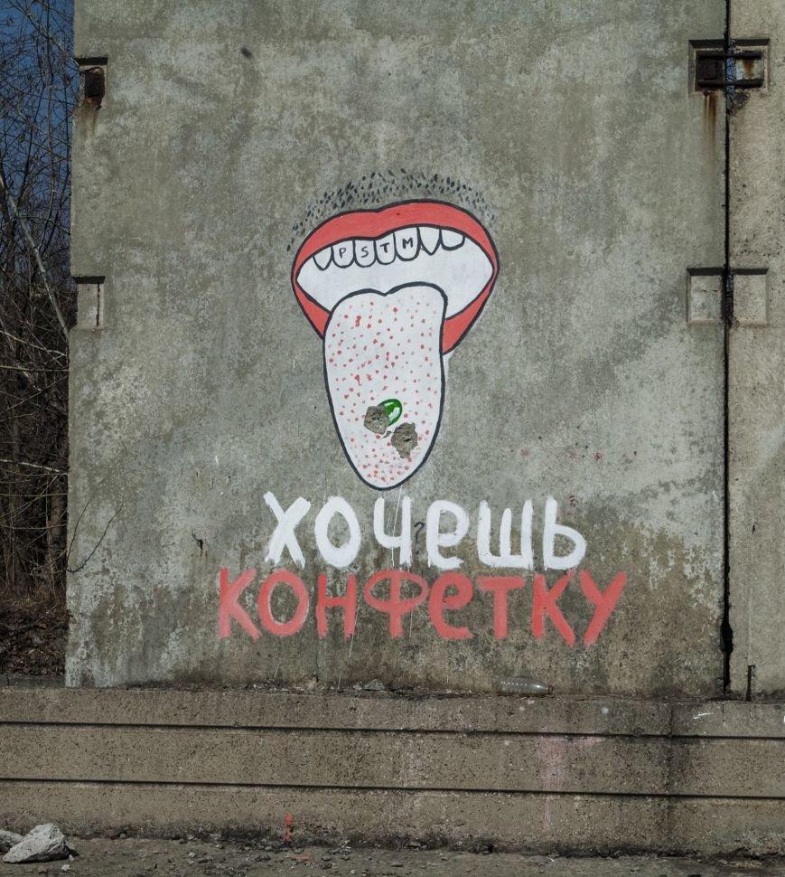 На окраине Запорожья найдена тренировочная база граффити (ФОТОРЕПОРТАЖ), фото-25