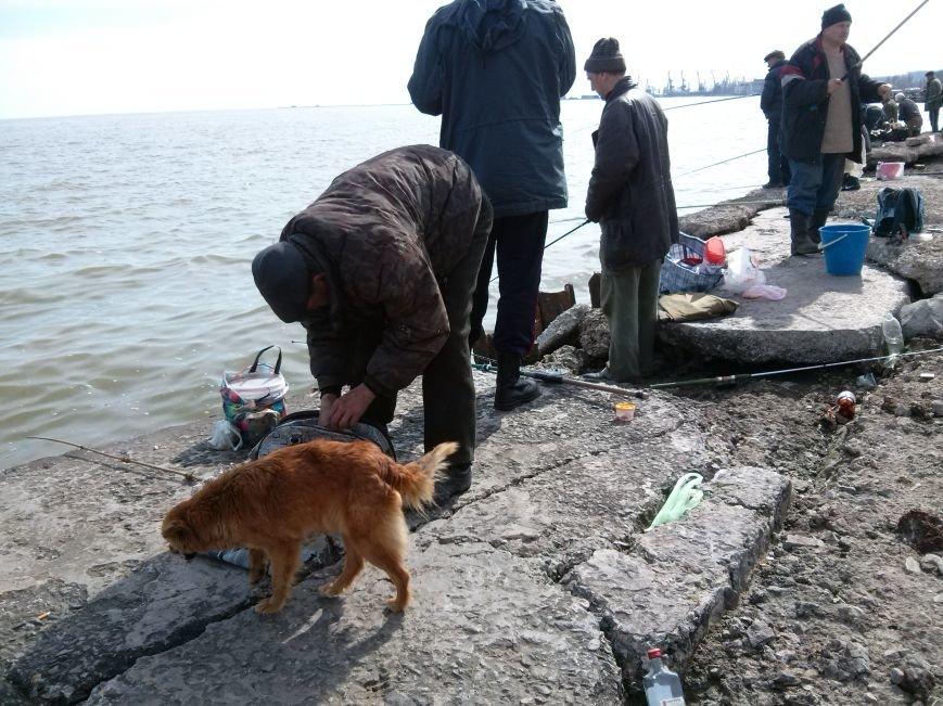 В Мариуполе наблюдается массовое поломничество к морю (ФОТОФАКТ) (фото) - фото 3