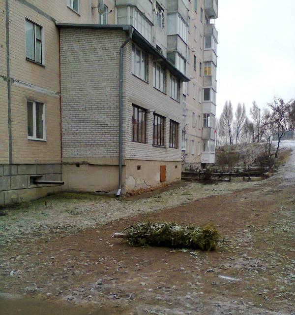Купи сміття та порушення ПДР: добірка світлин про «культуру» тернополян (фото) - фото 1