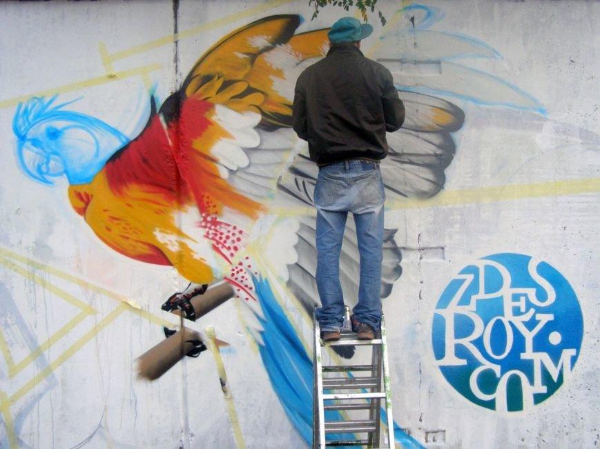 Уличный художник Roy: «Главное - творческий подход» (ФОТО) (фото) - фото 1
