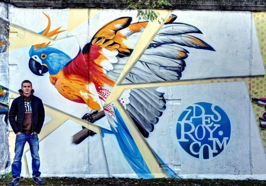 Уличный художник Roy: «Главное - творческий подход» (ФОТО) (фото) - фото 2