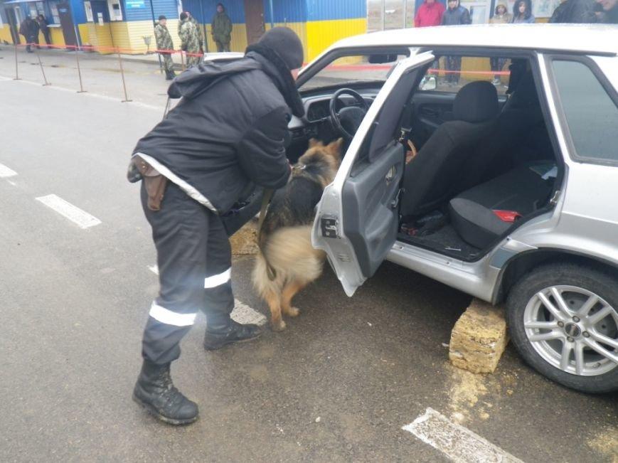 На границе Херсонщины задержали машину с оружием и наркотиками (фото) (фото) - фото 3