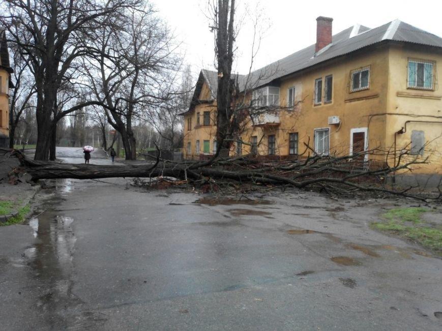 Последствия непогоды в Кривом Роге: деревом придавило ВАЗ, оборвало электропровода и перекрыло дорогу (ФОТО) (фото) - фото 7
