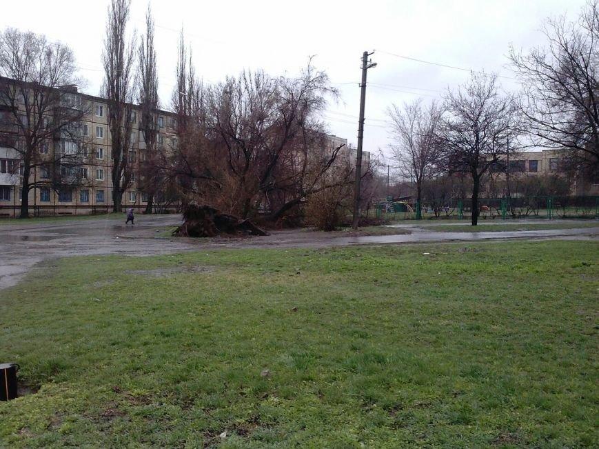 Последствия непогоды в Кривом Роге: деревом придавило ВАЗ, оборвало электропровода и перекрыло дорогу (ФОТО) (фото) - фото 8