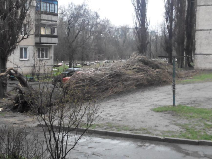 Последствия непогоды в Кривом Роге: деревом придавило ВАЗ, оборвало электропровода и перекрыло дорогу (ФОТО) (фото) - фото 2