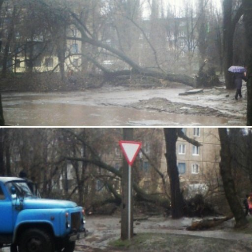 Последствия непогоды в Кривом Роге: деревом придавило ВАЗ, оборвало электропровода и перекрыло дорогу (ФОТО) (фото) - фото 6