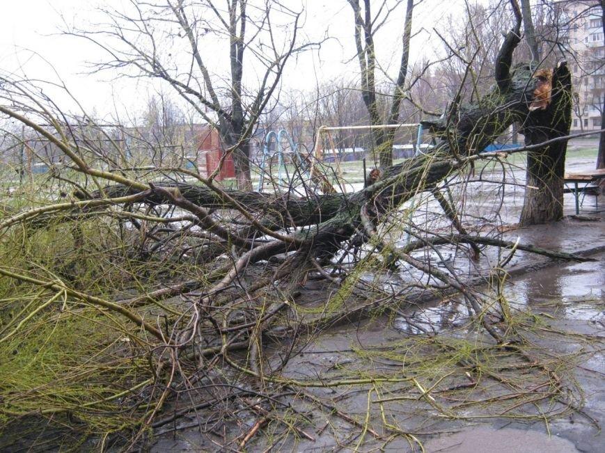 Последствия непогоды в Кривом Роге: деревом придавило ВАЗ, оборвало электропровода и перекрыло дорогу (ФОТО) (фото) - фото 4
