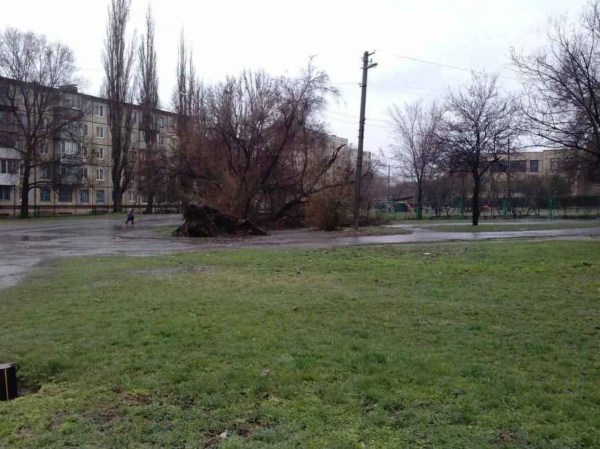 В Кривом Роге: во время урагана повалили памятник Ленину, дерево придавило машину, а в центре города появилась речка Косиорка (фото) - фото 3