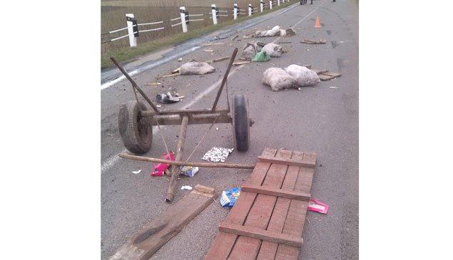 На Тернопільщині у ДТП загинув 61-річний чоловік (фото) - фото 1