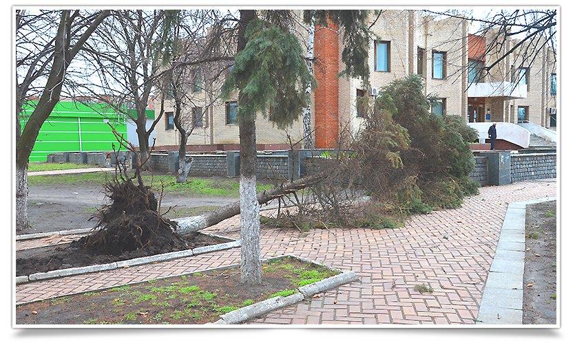 Славянск лишился ещё одной красавицы(фотофакт) (фото) - фото 3