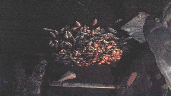 В Кременчугском районе поймали браконьера, поймавшего рыбы на 15 000 гривен (ФОТО) (фото) - фото 1